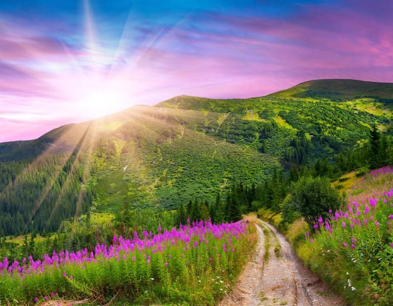 павлович картинки хорошего утра природа огромен
